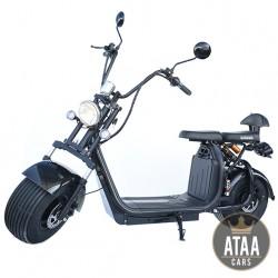 CityCoco Targabile ATAA Doppia batteria rimovibile